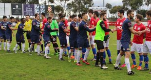 PREVIEW: Pascoe Vale at home