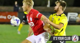 NPL R7 Preview – Heidelberg United FC v Melbourne Knights FC