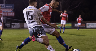 Knights fall to Avengers at home